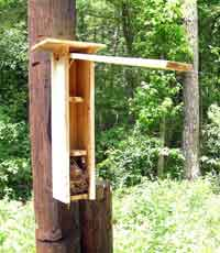 Nestbox Keith Krider for Flying Squirrels