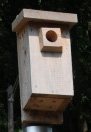 wooden block over hole to protect from enlargement by squirrels etc.  Sorry, I forgot who sent me this picture!