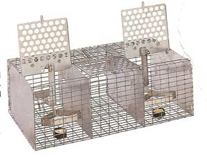 ST-1 wire sparrow trap PMCA