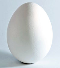 calcium carbonate content white brown eggshells Introduction calcium carbonate,  hcl to compare the ca carbonate composing of white ( poulet ) eggshells to brown  to hold a higher ca carbonate content.